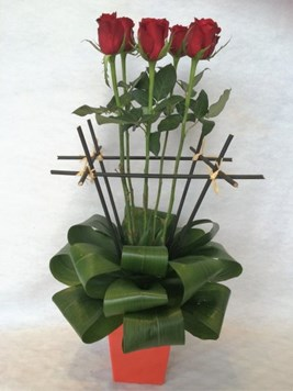 Arrangements: 6 Red Roses Modern